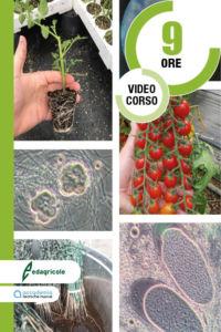 Microrganisiami Edagricole+ATN V