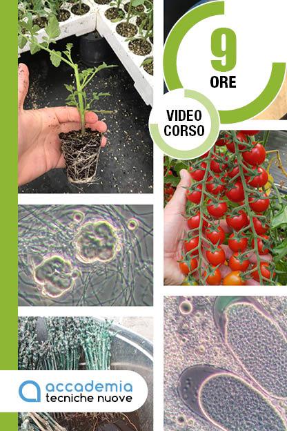 Microrganismi V